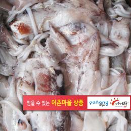 손질생물오징어1kg(등외품)