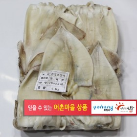 국산 손질생물오징어 18~22미 .2팩.  12k